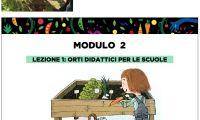 modulo2